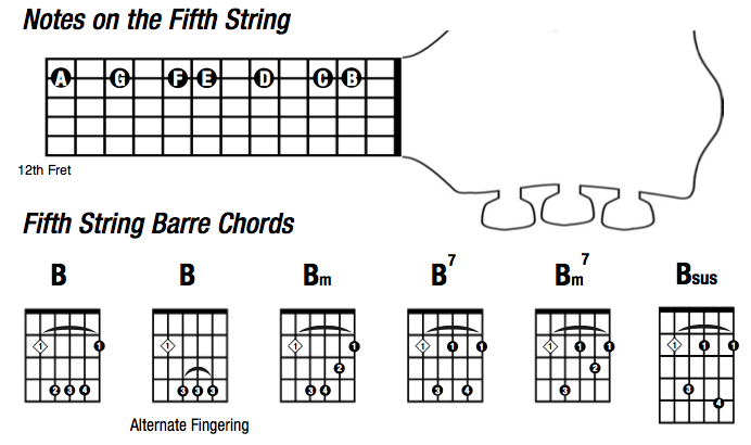 Gibsons Learn Master Guitar Blog With Steve Krenze Barre Chords