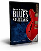 The Blues Guitar Course