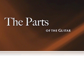 Parts of a Guitar - Strings